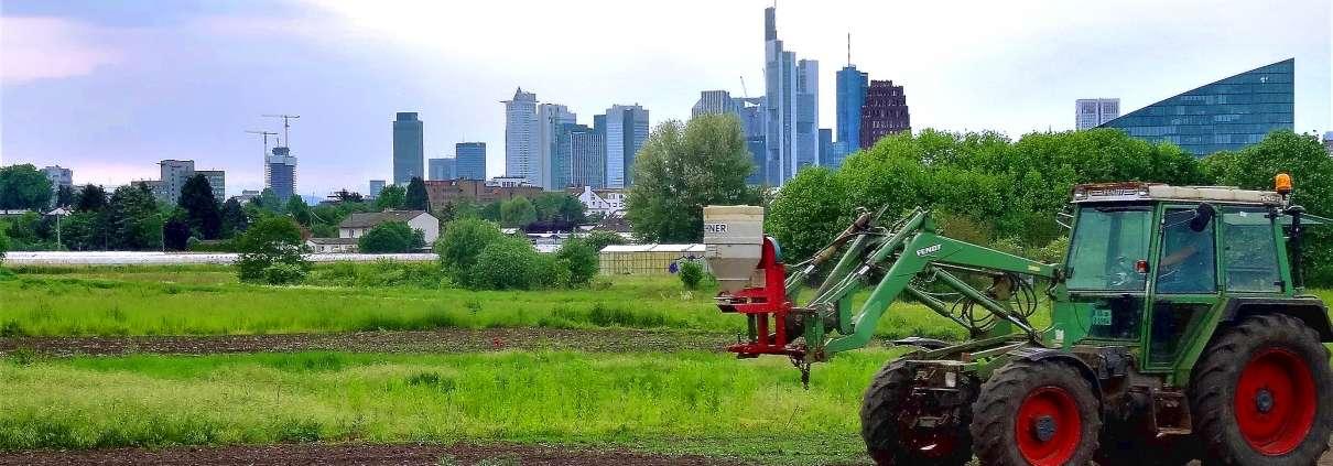 Die Kooperative mit Skyline Frankfurt