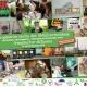 Poster Europäische Woche der Abfallvermeidung unverpackt einkaufen in Frankfurt